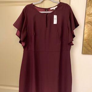 Plum purple loft dress NWT plus size 16 retail $85
